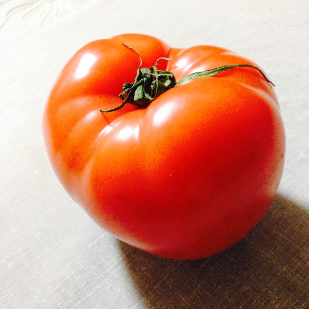 トマト!! 雑談